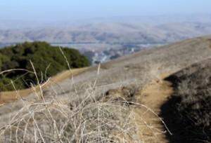 arriba-vista-trails1